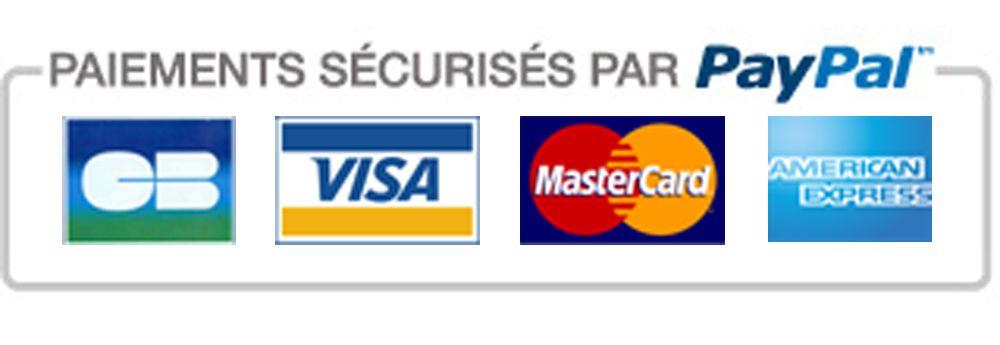 paiement sécurisé paypal wegoboard